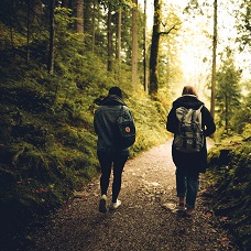 people walking through woods