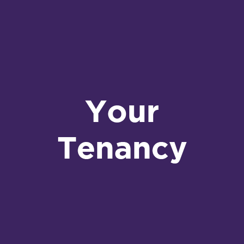 https://platformhg-redesign.verseonecloud.com/your-tenancy